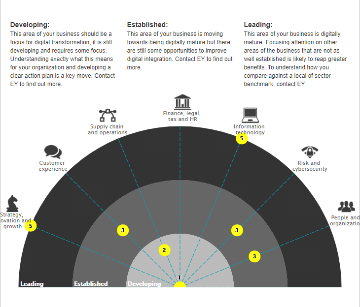 digital-maturity-check-by-ey